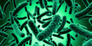 """Read more about the article The Probiotic Popularity Contest-May The """"Good Guys"""" Win"""