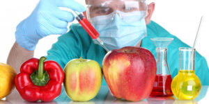 Read more about the article What are GMOs?